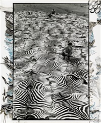 zebra carpet, lariak estate, laikysia, sept. 1960, for the end of the game, last word from paradise by peter beard