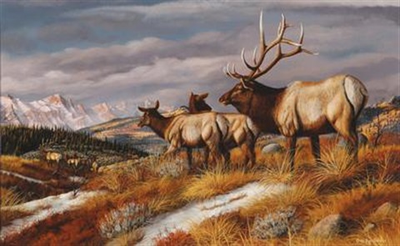 elk by gary r swanson