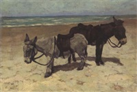 little donkeys on the beach by hendrick j..f. van langen