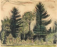 the pines by henry varnum poor