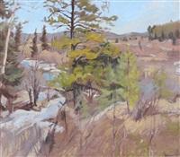 bragg creek, last snow by frank vervoort