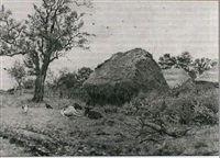 calves resting by haystacks by wilmot pilsbury