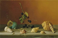 nature morte aux coquillages by fernand renard