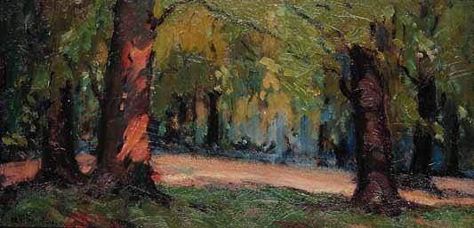 the cedar grove by mildred valley thornton