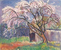 flowering tree by harold c. davies