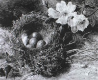 still life with a bird's nest with eggs and wild roses by helen cordelia angell