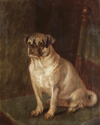 seated pug by a. townsend