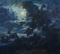 acapulco nocturne by carl hoerman