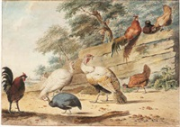 turkeys, chickens, and a guinea fowl by a wooden fence by christian henning