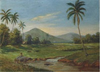 water buffaloes by a river, java by jan van aken