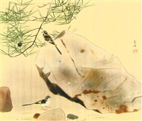 wagtail by kayo yamaguchi