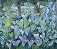 vegetazione by nando coletti