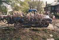 untitled (blue truck with wisteria), memphis by william eggleston