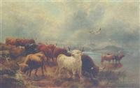 highland cattle watering in a misty loch by r. watson