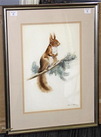 red squirrel by eileen alice soper