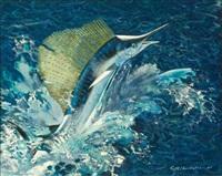 sailfish by keith shackleton