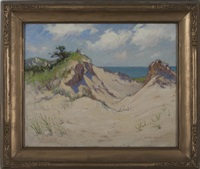 view from the dunes by stacy tolman