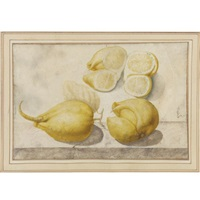 lemon, citrus limon (l.) burm. f.: two twin -fingered lemons and two transverse sections of a third by giovanna garzoni