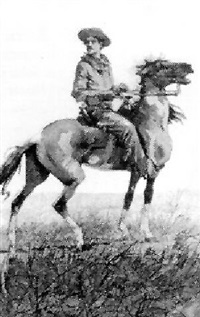 mounted cowboy by george mcevoy