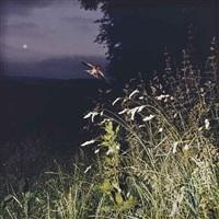 no. 1 juillet by jean-luc mylayne