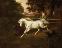 chevaux by hermann loeschin
