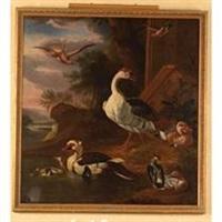 oies, canard de barbarie, vanneau huppé et autres oiseaux dans un paysage de rivière by robert griffier