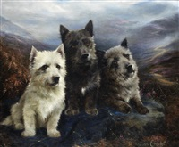 wee three - a west highland white terrier, a scottish terrier and a cairn terrier by lilian cheviot