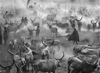 dinka cattle camp of amak, southern sudan by sebastião salgado