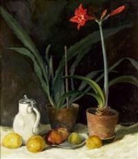 amaryllis, kaktus, fayencekrug und äpfel by gunther blechschmidt