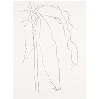 dracena 1 from plant series by ellsworth kelly
