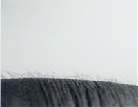 untitled landscape (study) by jeanne dunning
