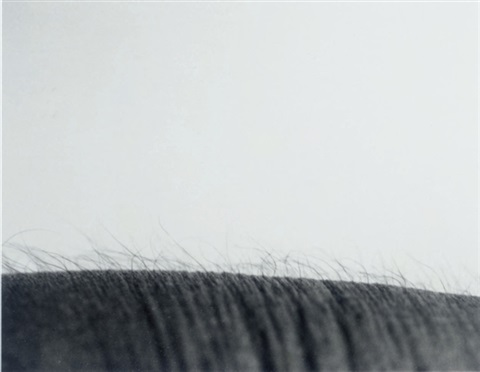 untitled landscape study by jeanne dunning