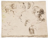 sheet of studies of heads by mauro gandolfi