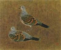 pigeons by kayo yamaguchi