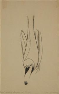 Morris Graves Birds