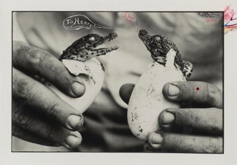 to henry happy easter mingled destinies of crocodyles and man moite bay lake rudolf by peter beard
