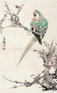 桃花鹦鹉 by wang xuetao