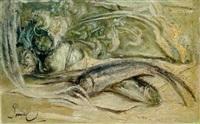 peces by fidelio ponce de león