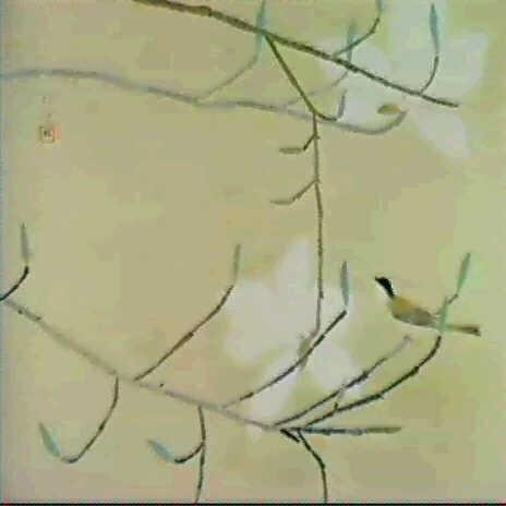 magnolia by fuku akino