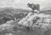 vacas de campo (asturias) by serafín avendaño