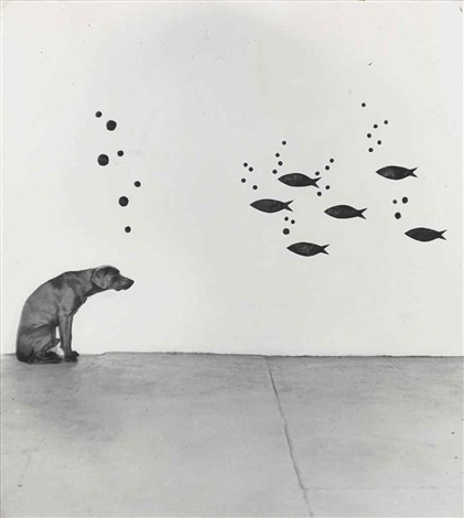 dog fish bubbles by william wegman