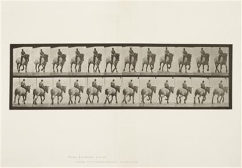 plate 599 from animal locomotion by eadweard muybridge