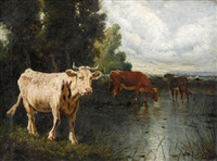 cows watering by marie dieterle