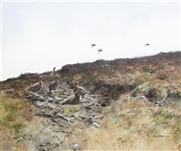 a dark day on the moor - grouse by rodger mcphail