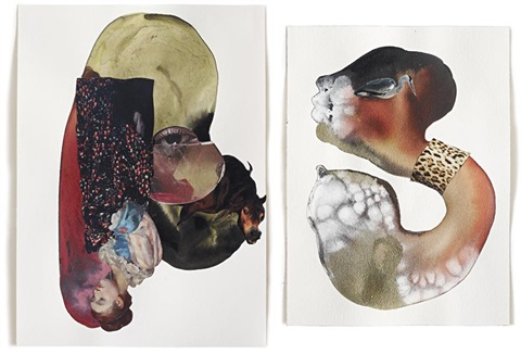 hooked worm in 2 parts by wangechi mutu