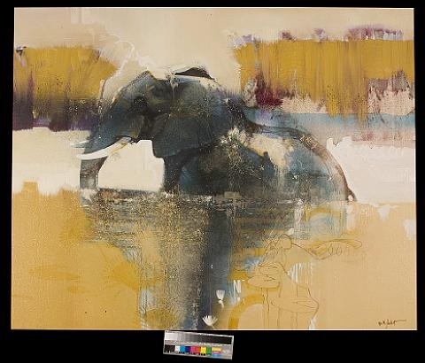 chobe river elephant by keith joubert