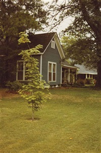 untitled (cottage) by william eggleston