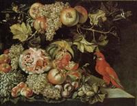 natura morta con uva, mele, melone, due uccelli e un papagallo by agostino verrocchi