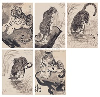 tiger (5 works) by sa dji