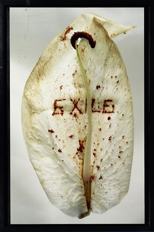 fragility exile by anne and patrick poirier